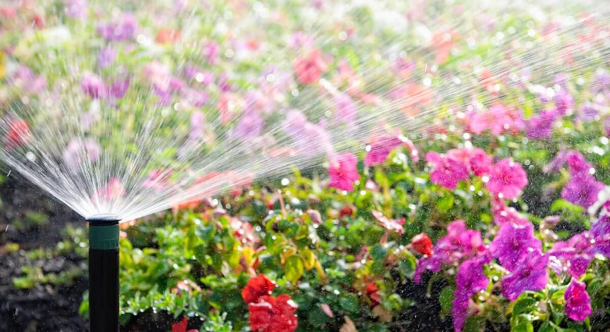 sprinkler-water-saving organic gardening solution