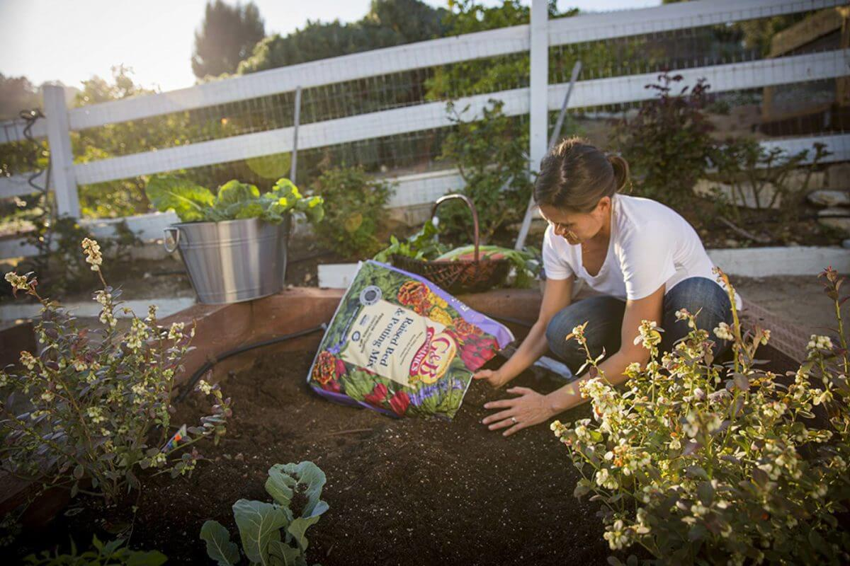 Learn about compost for National Learn About Composting Day