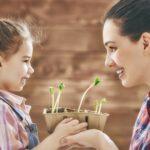 who-is-the-organic-gardener