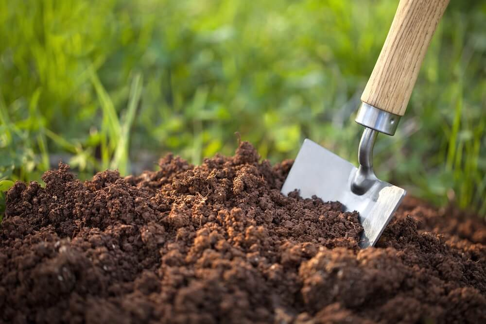 Garden trowel in the soil