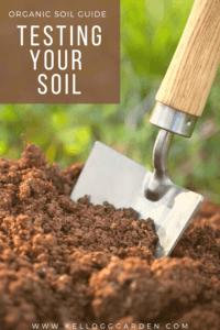 small shovel in the dirt pinterest image