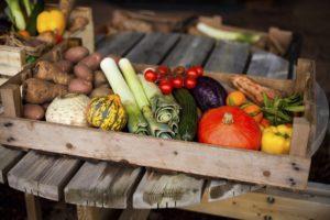 Growing Warm Season Veggies