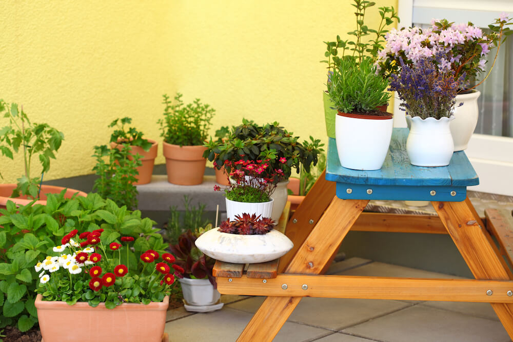 Small herb and flower garden built on terrace or roof