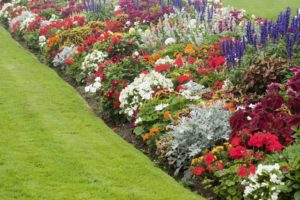 landscaping with flowers
