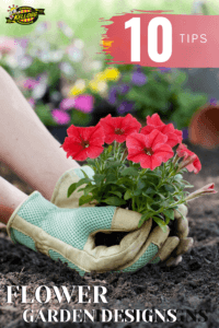 planting red flowers with greenish blue gloves