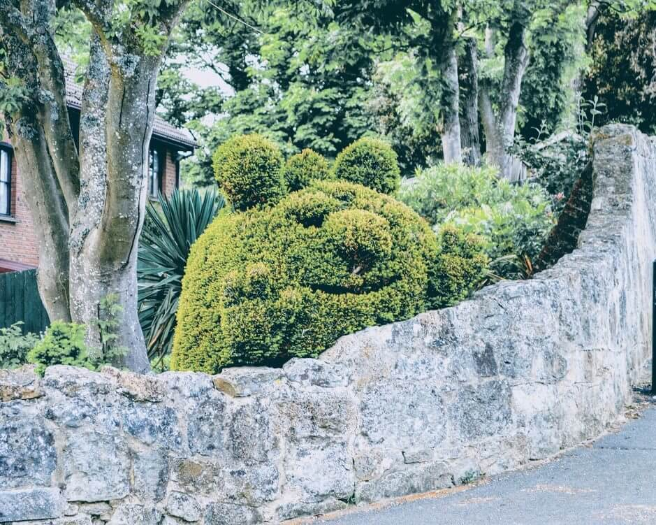 Stone Wall Topiary Monster