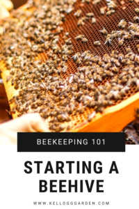 """Beekeeper with text, """"Beekeeping 101, starting a beehive"""""""