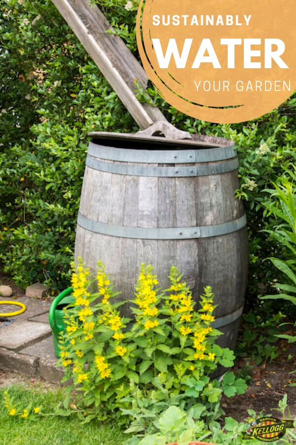 """Rain water collection barrel with text, """"Sustainably water your garden"""""""