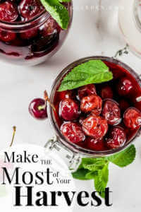 "canning cherries with text, ""Make the most of your harvest"""
