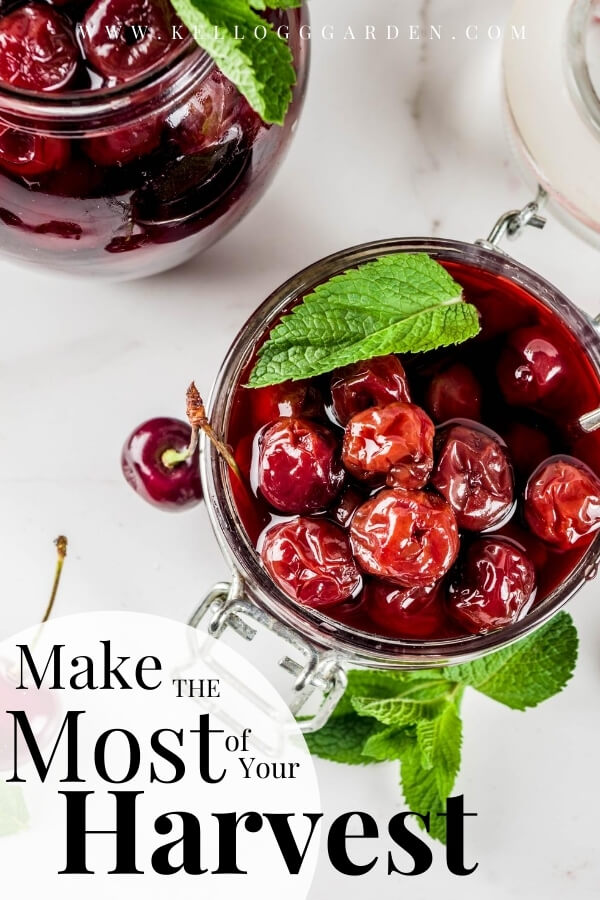 """canning cherries with text, """"Make the most of your harvest"""""""