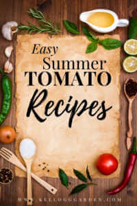 "Kitchen utensils and veggies with text, ""Easy summer tomato recipes"""