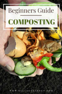 """man holding vegetable kitchen scraps with text, """"Beginners guide to composting"""""""