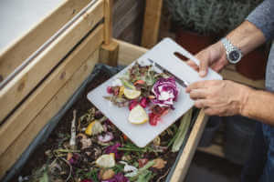 Kitchen waste being composted