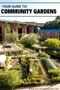 Community garden guide