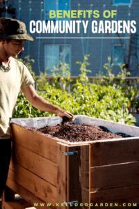 Benefits of community gardens