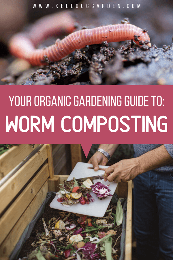 Worm composting guide