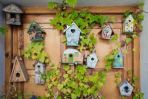 Lots of birdhouses