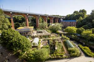 Urban community garden