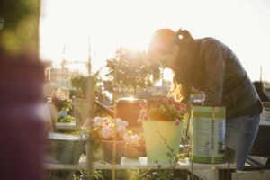 Women working in a community garden
