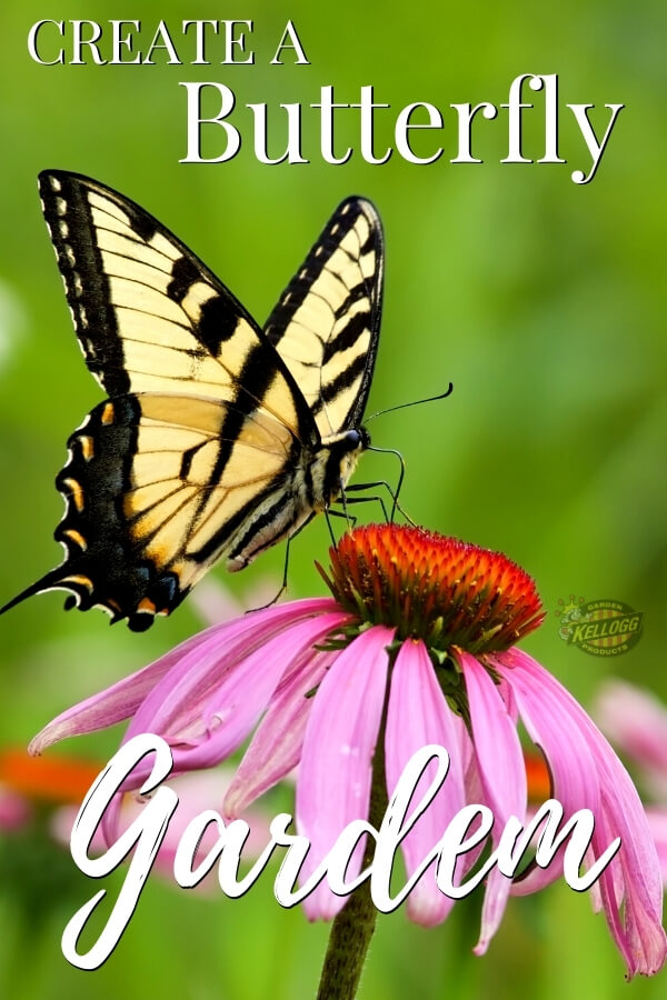 """Butterfly sitting on a pink flower with text, """"Create a Butterfly Garden"""""""