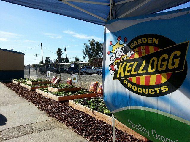 Kellogg Garden raised beds at a school