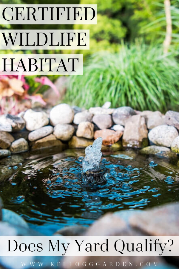 """Water fountain with text, """"Certified wildlife habitat, does my yard qualify?"""""""