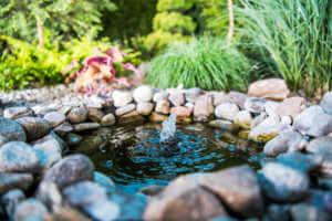 Small garden pond.