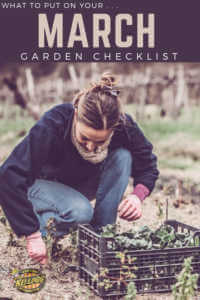 """Woman harvesting with text, """"What to put on your march garden checklist"""""""