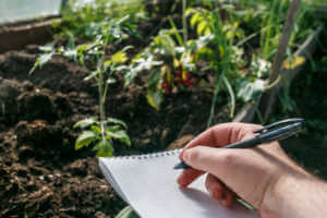 Taking notes in a notebook in the garden