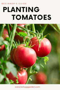 red tomato pin image