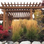 Gardening with perennials in the fall
