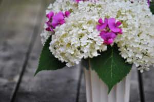Hydrangea and sweet pea in vase