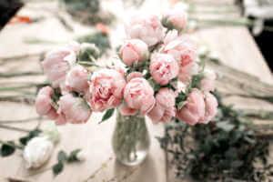 Pink Peonies in vase
