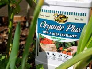 fish and kelp fertilizer