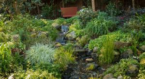 organic builds life hillside