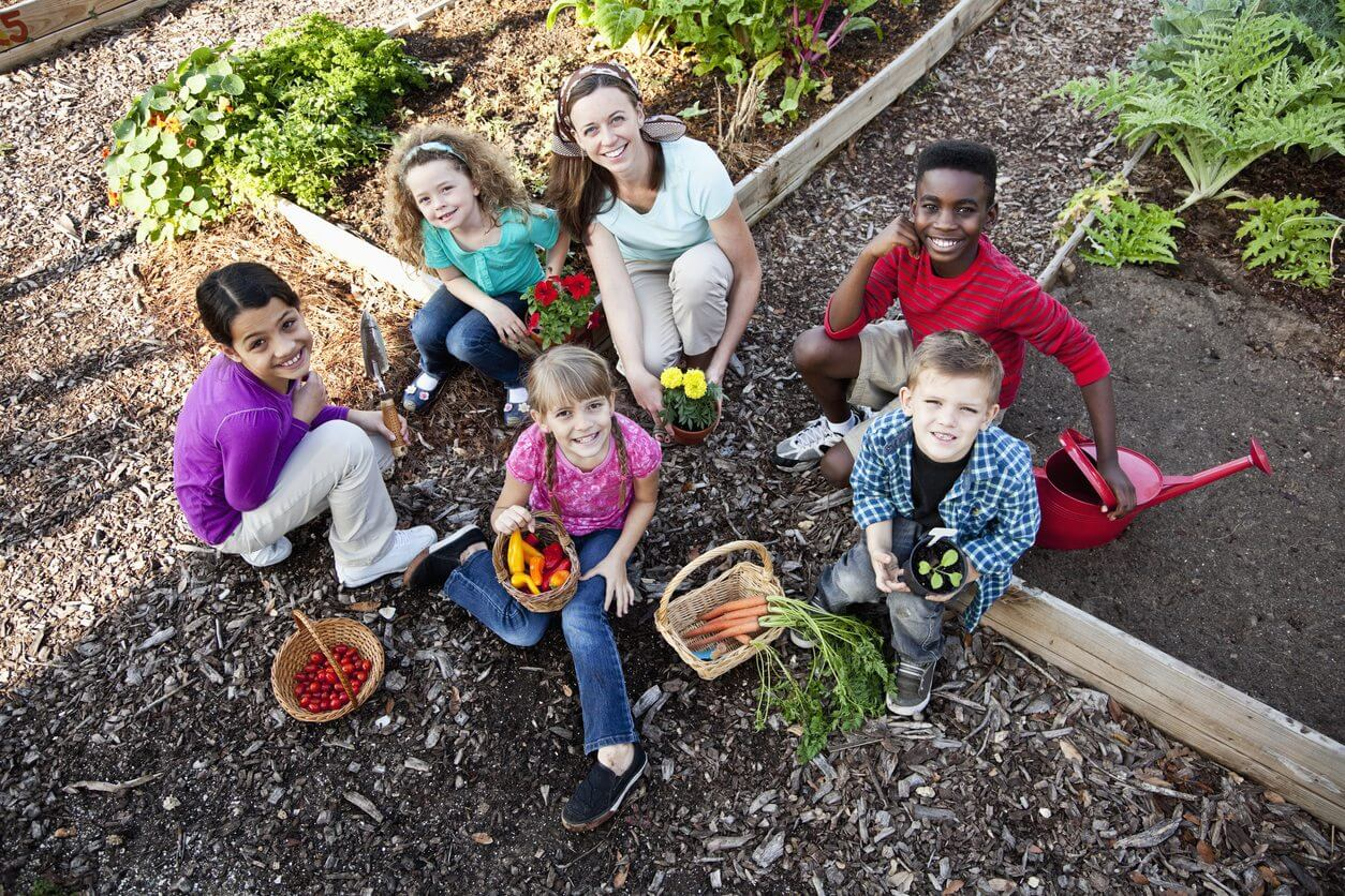 community or school garden