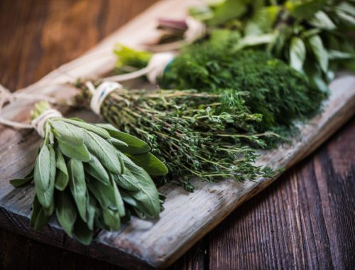The language of herb