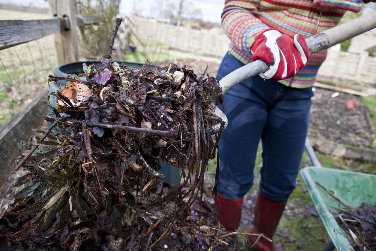 Composting Garden and Food Waste to fix your soil