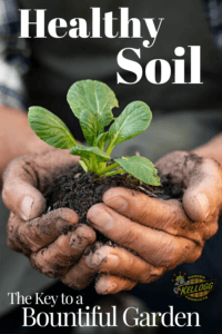 hands holding brown soil with a plant pin image