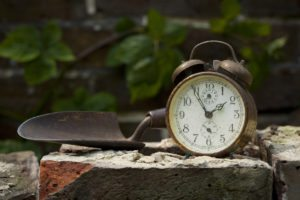 Time challenged gardens
