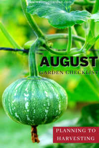 """Small fruit growing on a tree with text, """"August garden checklist. Planning to harvest"""""""