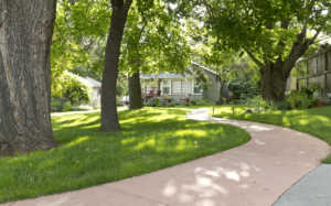 Path in the front of a home with a shaded yard