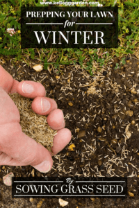 5 Steps to prepare your lawn for winter (1)