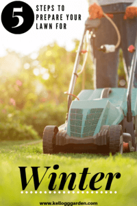 5 Steps to prepare your lawn for winter