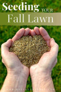 """Hands holding grass seed with text, """"Seeding your fall lawn"""""""