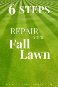 """Green grass with text, """"6 steps to repair your fall lawn"""""""