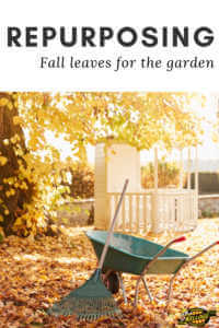 """Fall leaves and a wheel barrow with text, """"Repurposing fall leaves for the garden"""""""