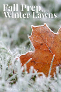 """Orange leaf in frosted grass with text, """"Fall prep for winter lawns"""""""