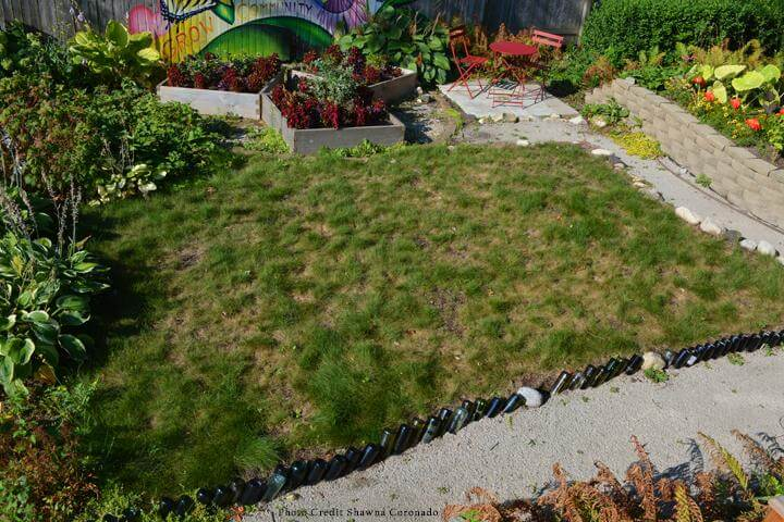 How to fix your fall lawn