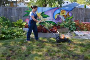 6 steps to fix your fall yard